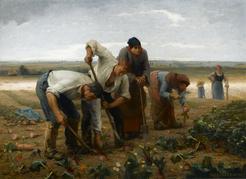 Arracheurs de betteraves en Picardie par Georges Paul François Laurent Laugée